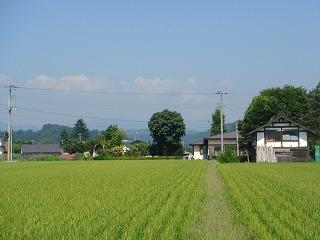 鮭川村の様子