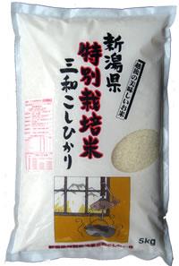 特別栽培米三和コシヒカリ