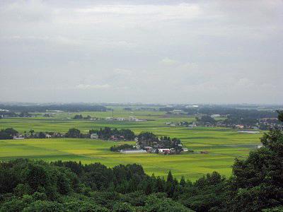 三和の田んぼ