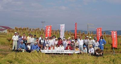 稲刈り集合写真
