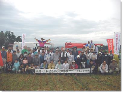 三和稲刈りツアー
