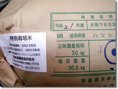 特別栽培米岐阜ハツシモ