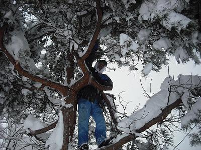 大雪の三和1