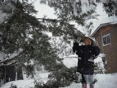 大雪の三和2