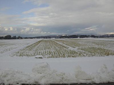 三和雪景色2