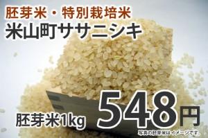 胚芽米・米山町産ササニシキ